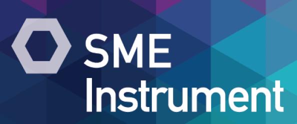 sme-instrument-491x205