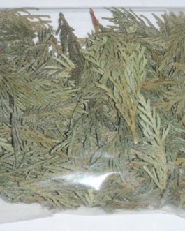 Cedar Leaves 1 oz.