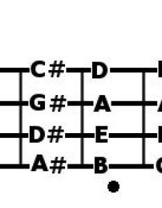 Bass notes chart also seatle davidjoel rh