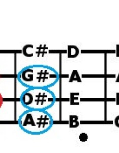 Bass guitar notes patterns also explained fretboard radius and neck profile rh smartbassguitar
