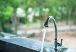 Looking for an Eco-friendly Upgrade? Try These Easy Ways to Save Water Around the Home