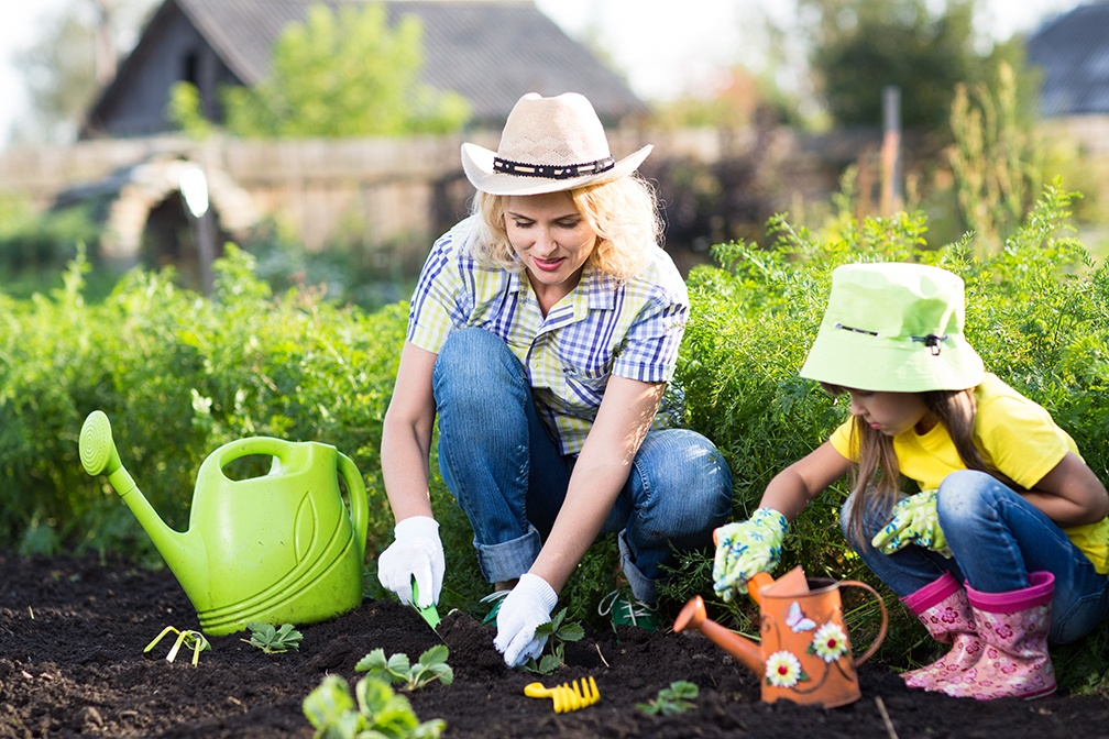 The Humble Vegetable Garden: A Fun, Health-conscious Home Project for the Entire Family