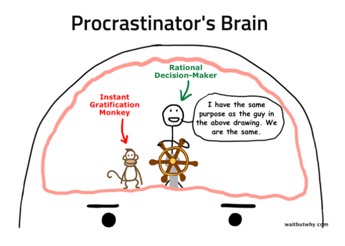 Procrastinator's Brain line drawing