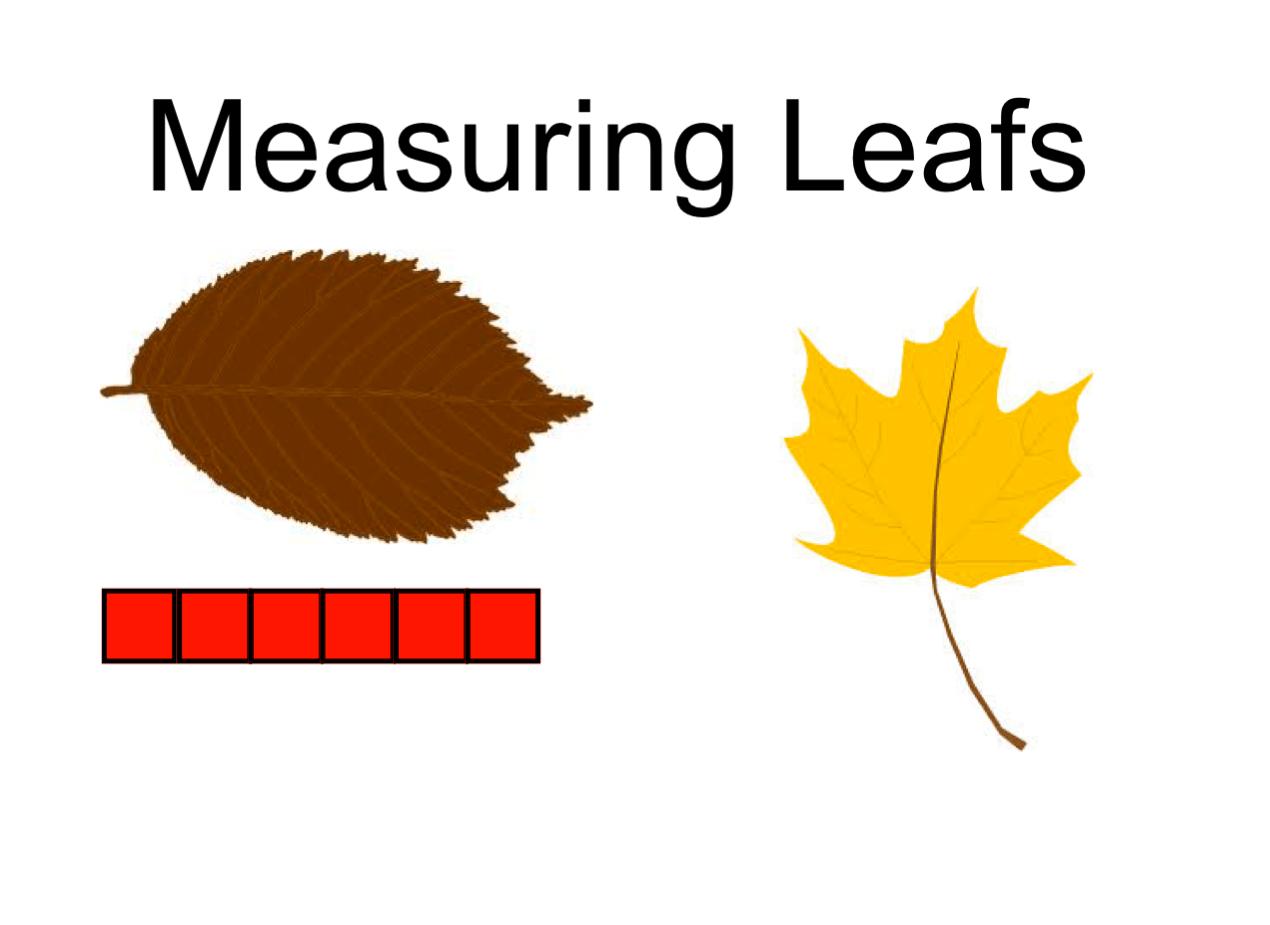 Measuring Leaves Smart Notebook Smart Board Ideas