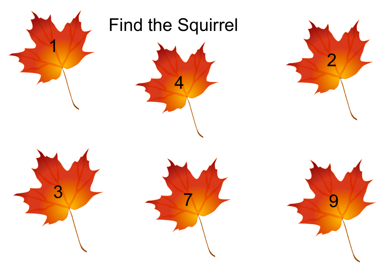 Find The Squirrel Number Identification Smart Notebook