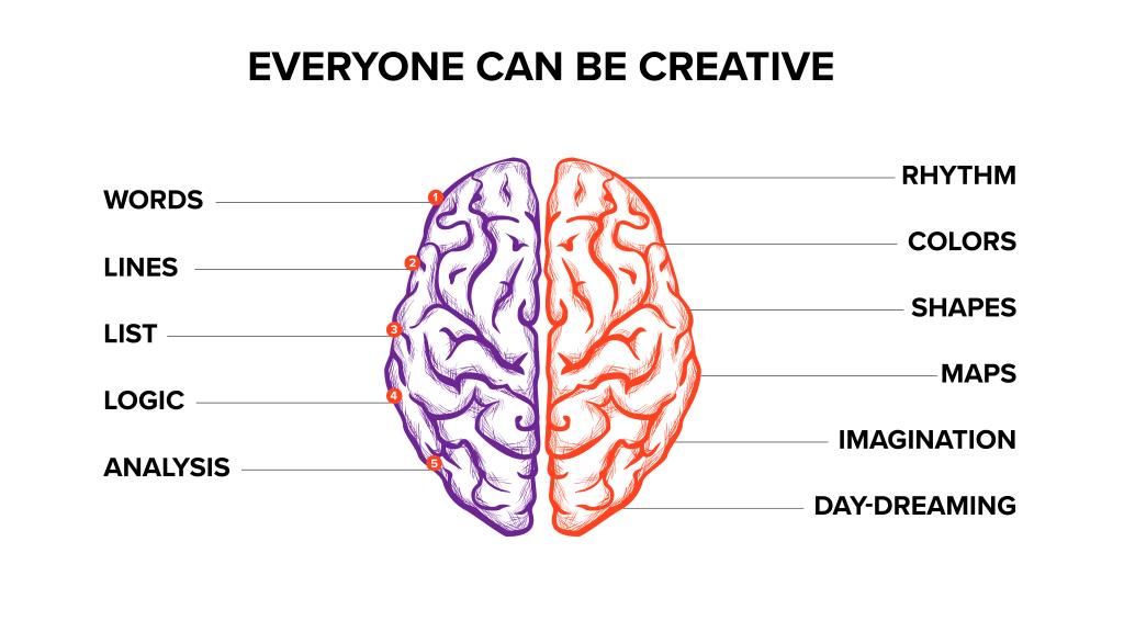 image of whole brain creativity