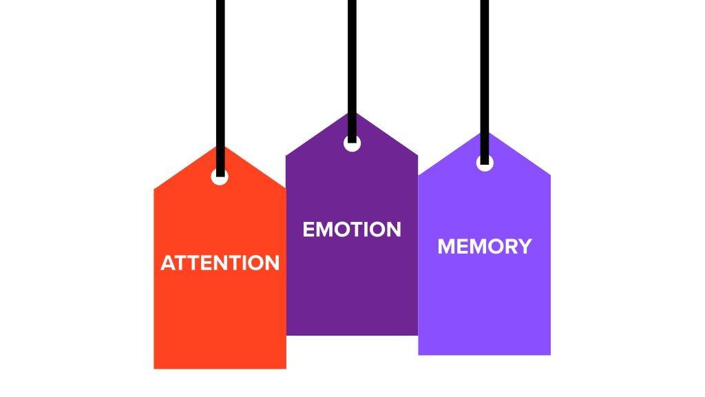 The three key metrics of neuroscience