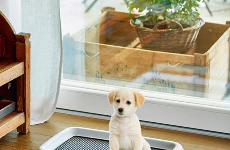 Εκπαιδευτική Πλαστική Τουαλέτα για Κουτάβια με Πάνες Nunbell Puppy Trainer