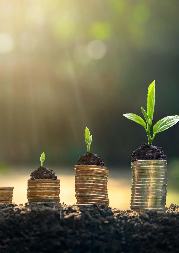 banca ecologică, fiecare ban contează