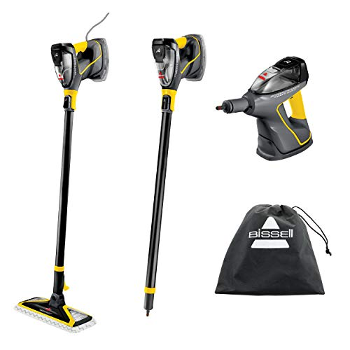 Steam Cleaner for Outdoors