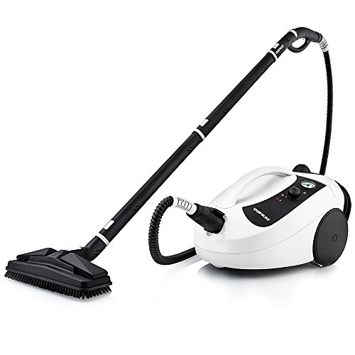 Professional Steamer for Cleaning