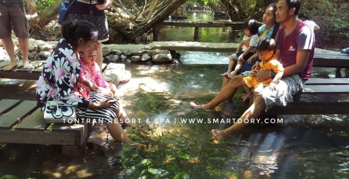 Natural River Fish Spa Review - Khanom Thailand