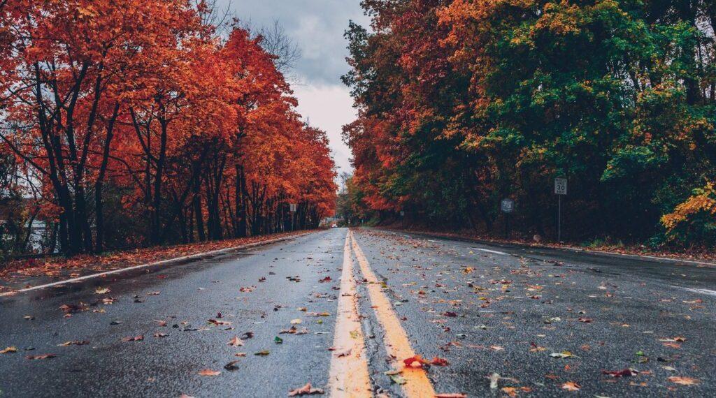 Chega o primeiro dia do Outono Meteorológico