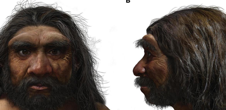 O fóssil do 'Homem-dragão' pode substituir os Neandertais como nosso parente mais próximo