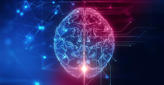 Equipa encontra mecanismo cerebral que liga objetos automaticamente nas nossas mentes
