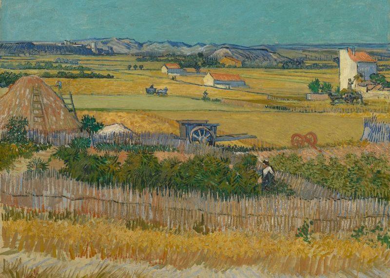 A Colheita: pintada em um único dia de verão, veja por que esta é a melhor paisagem de Van Gogh