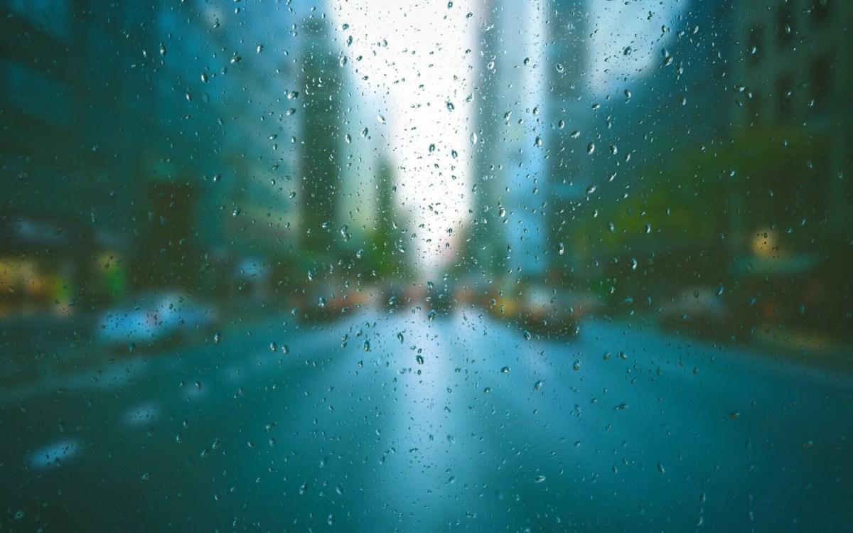 An Evening Wet With Rain