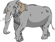 SHOOTING AN ELEPHANT BY GEORGE ORWELL-SUMMARY, EXPLANATION, AND QUESTION 1