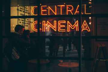 THE USES AND ABUSES OF THE CINEMA ESSAY 3