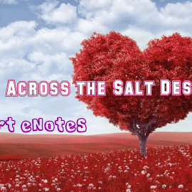 Summary and Questions of Love Across the Salt Desert