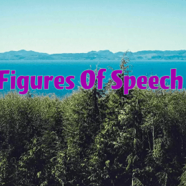 Top 25 Figures of Speech (Literary Terms)