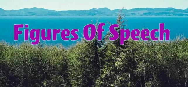 Top 25 Figures of Speech (Literary Terms)