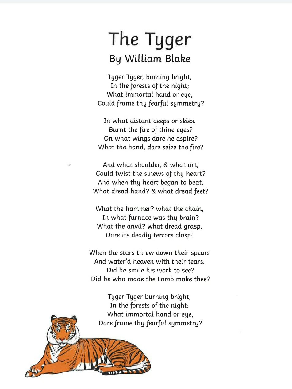 The Tyger by William Blake - Summary and Questions 1