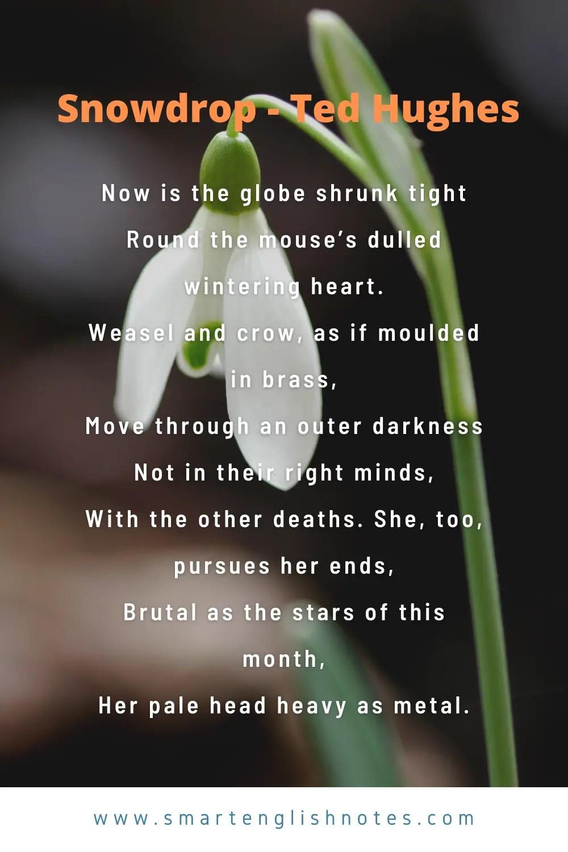Snowdrop Poem
