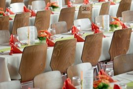 Celebration chairs - to hire a professional event planner for your events