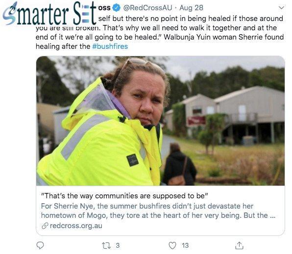 nonprofits blog bushfires