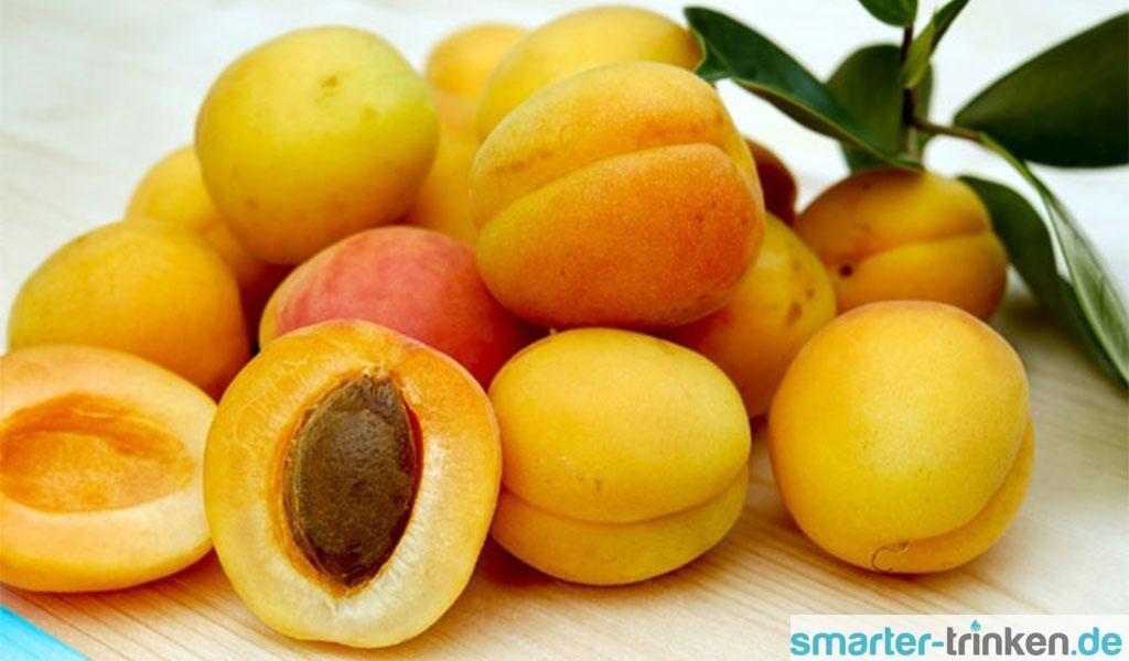 Aprikosen - Saftsommer in gelb