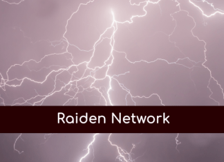 raiden network ico ethereum
