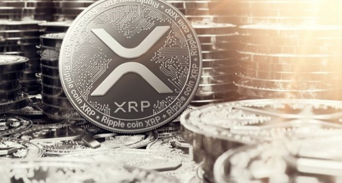 XRP Price Prediction 2019: Google Users in the United States