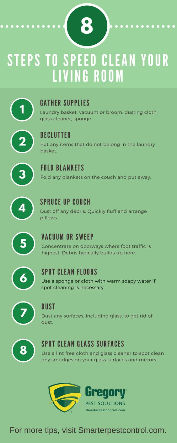 8 Steps to Speed Clean Your Living Room  Tips  Blog