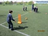 All star cricket (81)