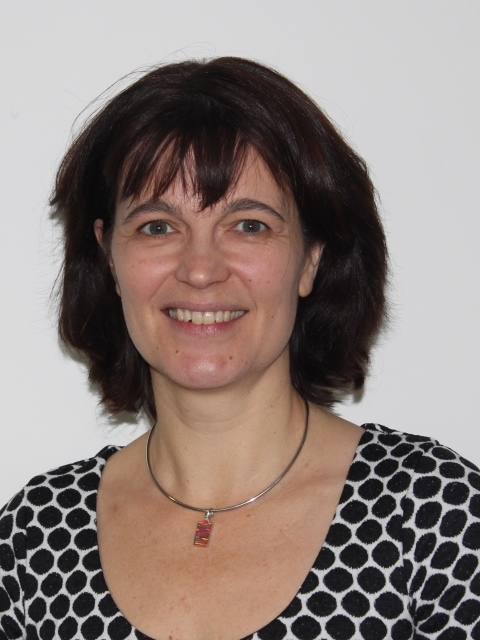 Ms Deb Thomas : Sponsor-Appointed Governor; Vice Chair of the Governing Body; Chair of the Standards Committee; Chair of the Admissions Committee; Curriculum/STEM Link Governor; Appointed October 2013