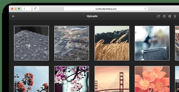Lychee showcase Open Source Gallery