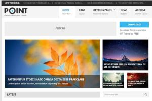 Tema WordPress Point