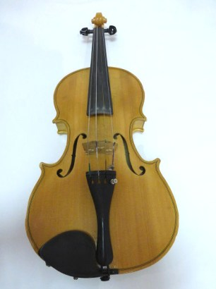Homemade Fiddle