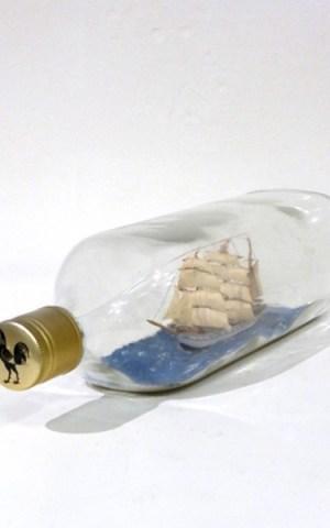 Ship In A Bottle By Mr Harrison