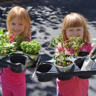 Week 3 – Cute Little Garden Helpers
