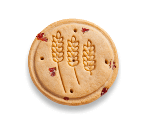 Random Thoughts on Religion and Cookies