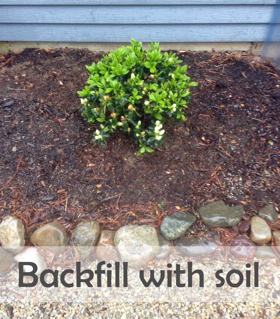 backfill with soil