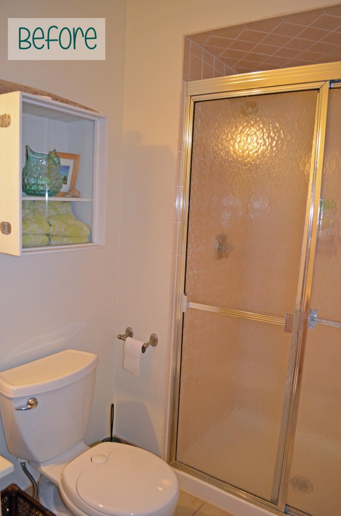 Guest bathroom BEFORE removing shower doors