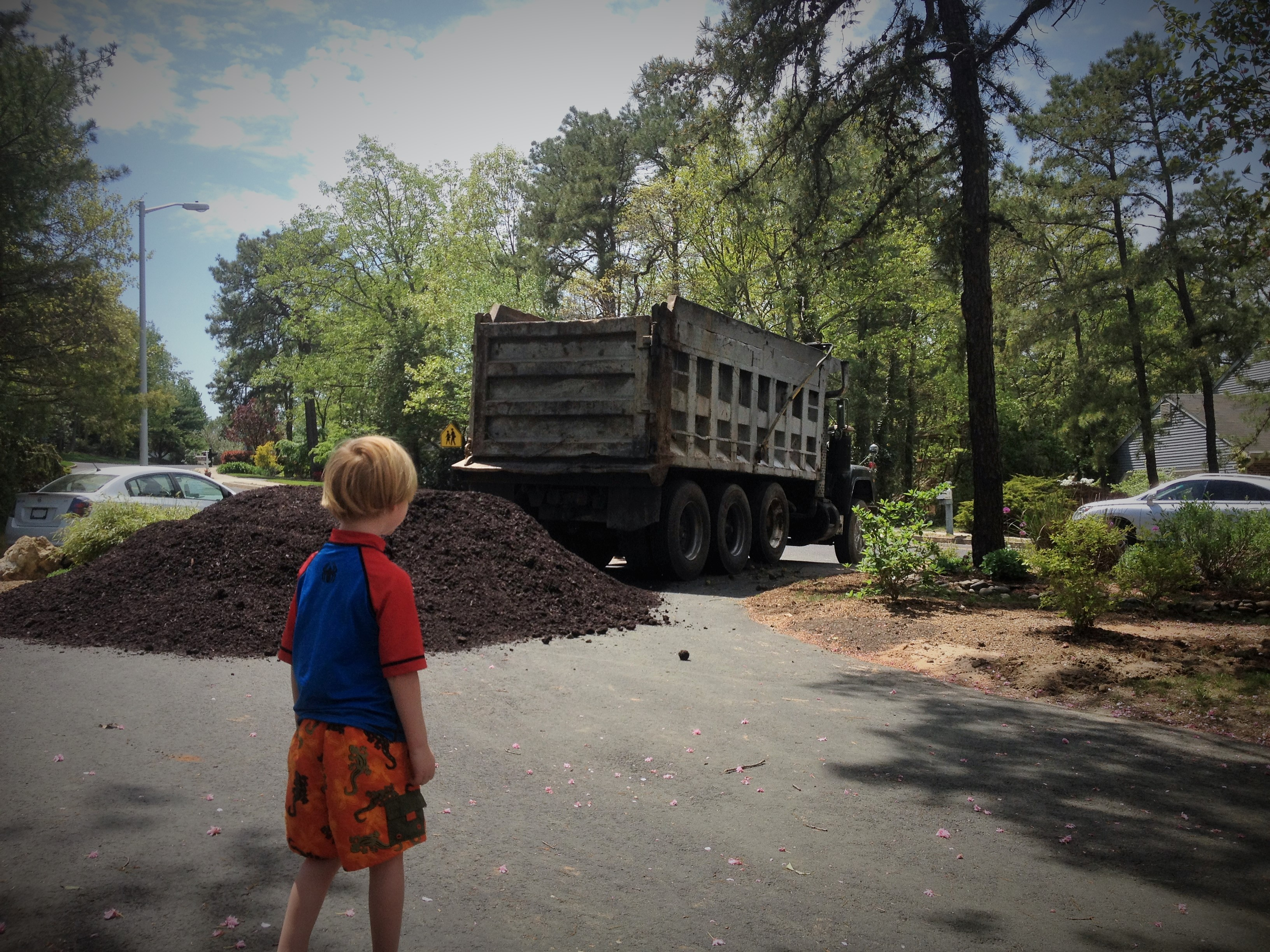 Little boys love dump trucks... mommy loves mulch