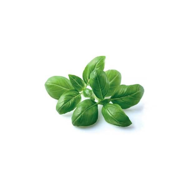 Click and Grow Smart Garden Refill 3-pack - Herbs Basil