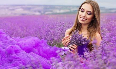 Lavender Oil for everyday
