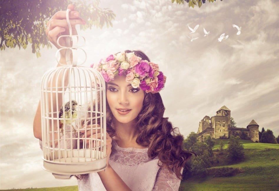 Im Like A Bird