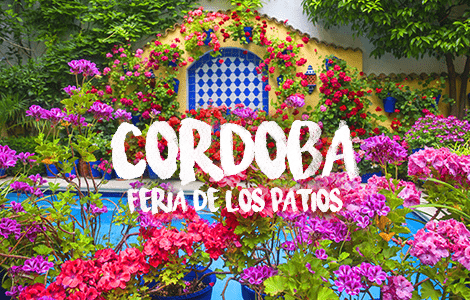 The Courtyard Festival of Cordoba, Trips
