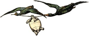 Read more about the article The Talkative Tortoise – Indian Fairy Tales